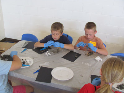 2012 junior vet camp college view lincoln 260.jpg